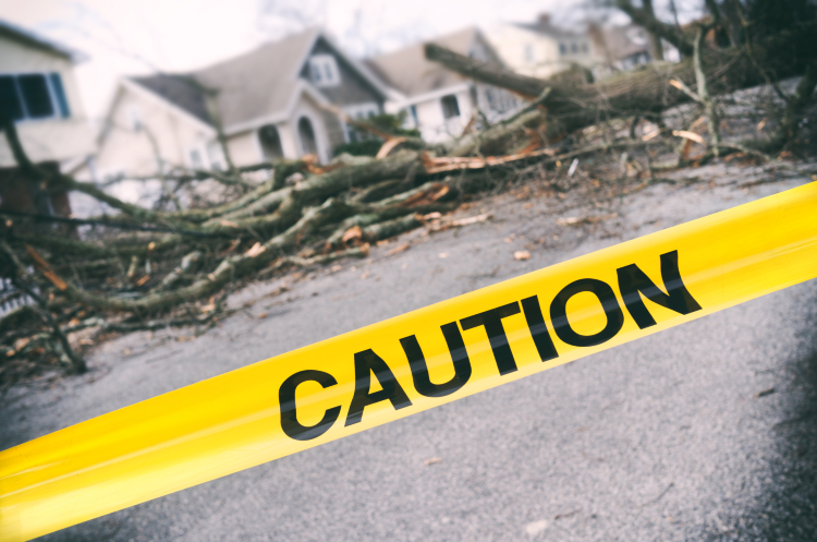 What To Do When Storms Damage Your Home